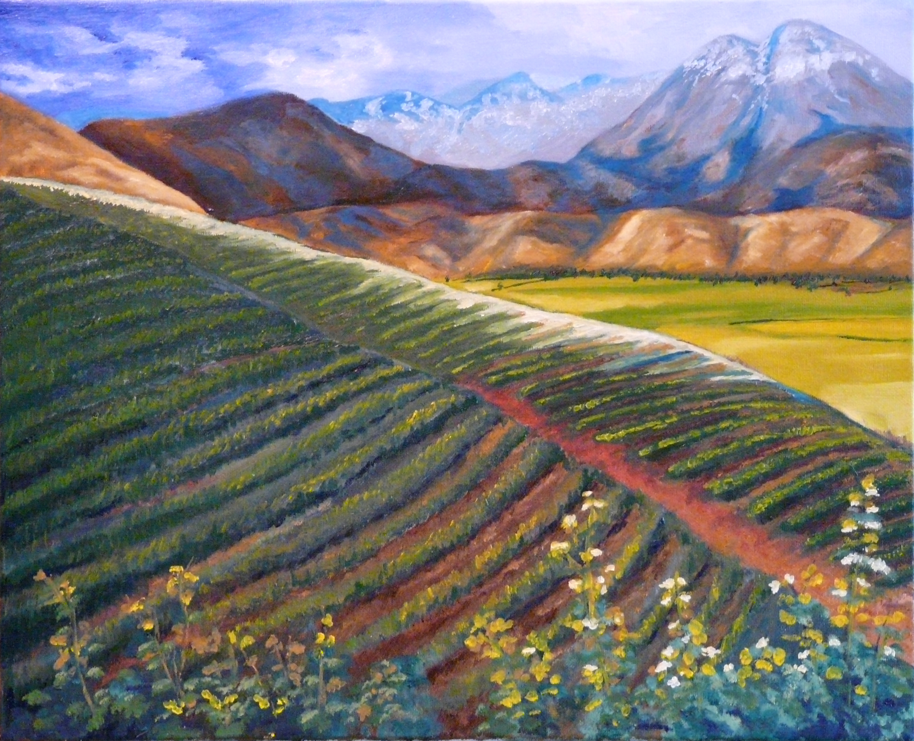 """Original Oil Painting by Vic Ritchey, """"Mountain Farmland, The vineyard"""""""